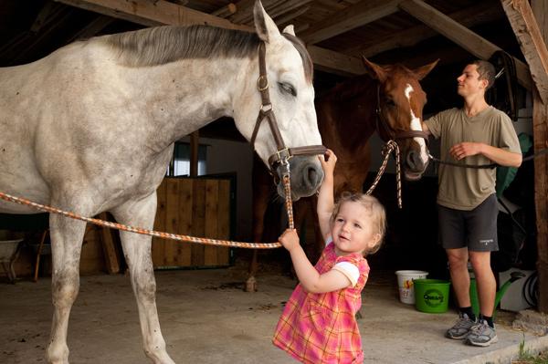 Pferde2_babybauernhof