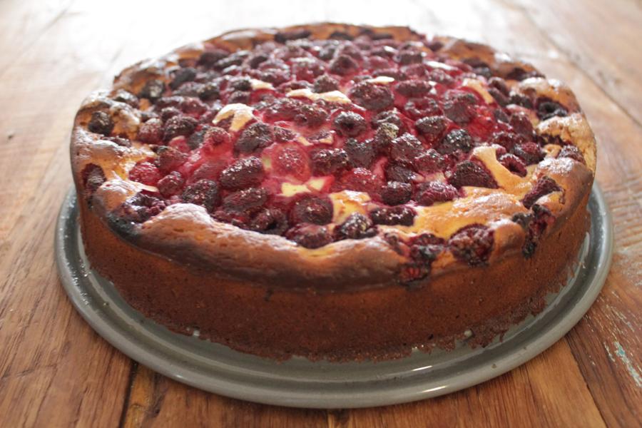 cheesecake_fertig